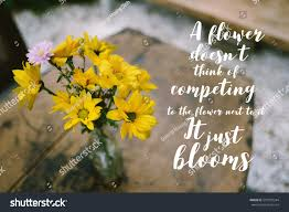 foto de stock sobre inspirational quote on blurred yellow flowers