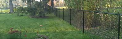 Black Chain Link Fence Vinyl Coated Ohio Fence Company