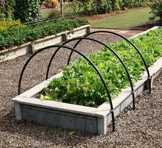 gardening in raised beds gardening