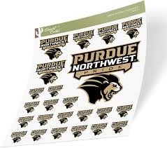 Amazon Com Purdue University Northwest Pnw Pride Ncaa Sticker Vinyl Decal Laptop Water Bottle Car Scrapbook Sheet Type 3 1 Arts Crafts Sewing