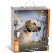 Sportdog Brand Rechargeable In Ground Fence System By Sportdog Brand At Fleet Farm