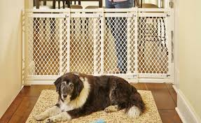 Finding The Best Retractable Pet Gate In 2020 For Your Home Pet Gate Pro