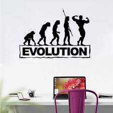 Evolution Fitness Wall Decal Gym Sticker Body Building Posters Vinyl Wall Art Murals Fitness Crossfit Decal Muscle Decoration Wall Murals And Stickers Wall Murals Decals From Onlinegame 11 85 Dhgate Com