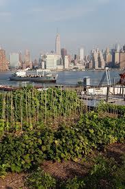 urban farmer urban farming rooftop garden