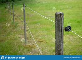 Electric Fence Around Farm Horse Paddock Stock Image Image Of Electrical Industrial 131079163