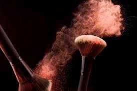 powder brush free vectors stock