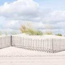 Coastal Beach Art Dune Fence Photograph With Beach Grass And Etsy