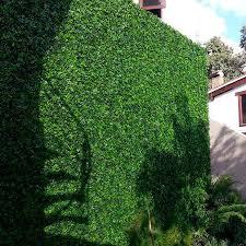 1 5 Ft H X 1 5 Ft W Artificial Moss Fence Panel Garden Fence Panels Garden Shrubs Fence Panels