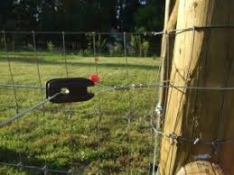 Bull Nose Insulator With Hot Wire Through It Privacy Fence Outdoor Power Equipment Concrete