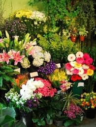 providence ri funeral home flower delivery