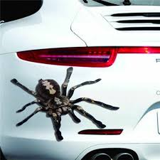 Car Styling Carprie Stickers Halloween Car Wall Home 3d Spider Sticker Mural Decor Decal Removable Terror New Td0424 Dropship Car Stickers Aliexpress