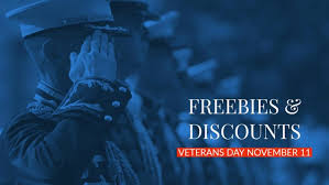 vetilitary on veterans day 2019