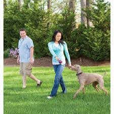 Petsafe Free To Roam Wireless Fence Radiofence Com