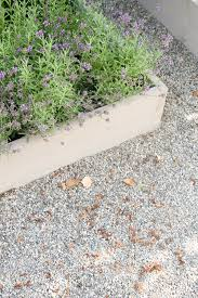 How To Keep Pea Gravel Clean Tidy Stacy Risenmay