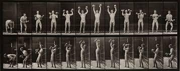 Eadweard Muybridge | Photographer's Biography & Art Works | Huxley-Parlour  Gallery