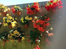 Garten Terrasse 6 Plant Pot Holders Hangers To Hang 6 Flower Pots On A Screw In Fence Or Wall Maybrands Com Ng