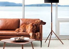 leather couch with dogs articulate