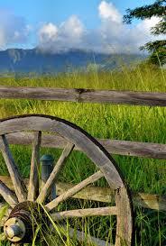 Old Wagon Wheel Against Wooden Fence Near Lihue On Kaua I Hawaii Encircle Photos