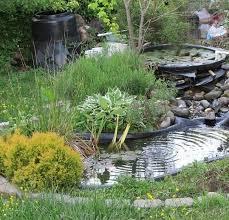 wildlife pond maintenance guide