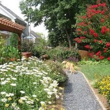 Backyard Dog Fences Houzz