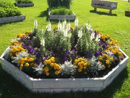 annual flower bed designs with wooden