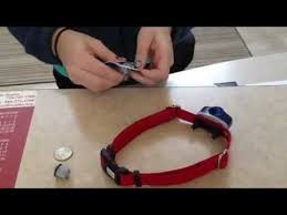 How To Change Your Invisible Fence Brand Power Cap Batteries Youtube