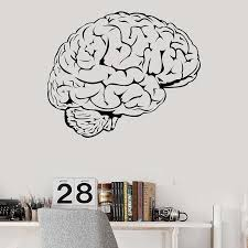 Brain Mind Anatomy Intellect Science Medicine Doctor Vinyl Wall Decal Home Decor Art Mural Wall Stickers Removable Wall Stickers Aliexpress