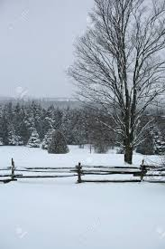 Winter Day Snow Covered Fence And Trees In Canada Stock Photo Picture And Royalty Free Image Image 100606420