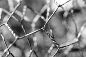 Abstract Chicken Wire Fence Metal Free Image From Needpix Com