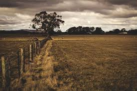 Cost Of Post And Wire Fencing Fencing Quotes Online Free Quote