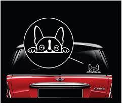 Boston Terrier Peeking Dog Decal Dog Stickers Custom Sticker Shop