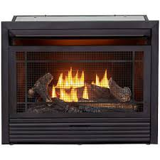 dual fuel ventless gas fireplace insert