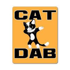 Dab Cat Dabbing Cute Orange Funny Animal Dancing Car Sticker Etsy In 2020 Funny Animals Funny Cats