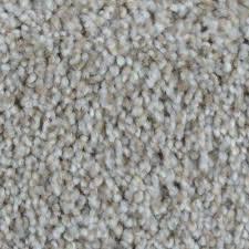 indoor carpet carpet the