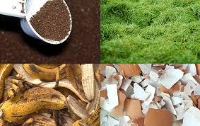 top organic garden fertilizers you can