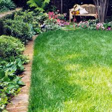 garden bed edging ideas better homes