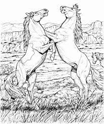 Anti Stress Kleurplaten Paarden Paarden Op 2 Benen 6