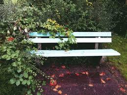 white wooden bench free image peakpx