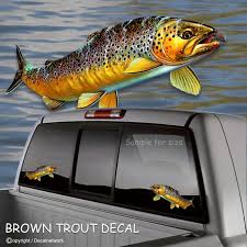 Brown Trout Fish Fishing Vinyl Decal 4x 8 5 Truck Etsy