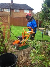 Tree stump removal in Hertfordshire: Welwyn Garden City, St Albans.