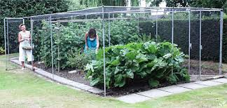 vegetable cages crop protection