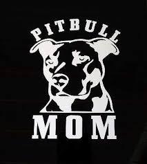 Amazon Com Expressive Vinyls Pitbull Mom Dog Ipad Vinyl Car Window Decal Sticker Love A Bull Pit Bull Home Kitchen