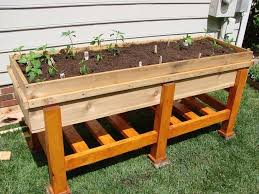 waist high planter box above ground