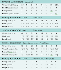 shoe specifications and sizing glue