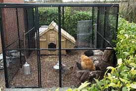 Rat Proof Chicken Cage And Free Ranging Run