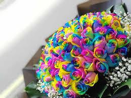 use a rainbow roses bouquet as a