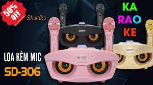 Loa Bluetooth Karaoke Hình Mắt Cú SD-306 Tặng 2 Mic Karaoke Không Dây , Mua  Micro Karaoke, Micro Bluetooth Không Dây Giảm Đến 50% , Mic Đôi Hát Karaoke  Loa Bluetooth SD