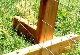 Portable Chicken Fencing And Garden Fencing Chicken Fence Chickens Backyard Building A Chicken Coop