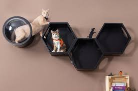 modular cat shelves with modern design