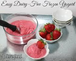 dairy free frozen yogurt recipe